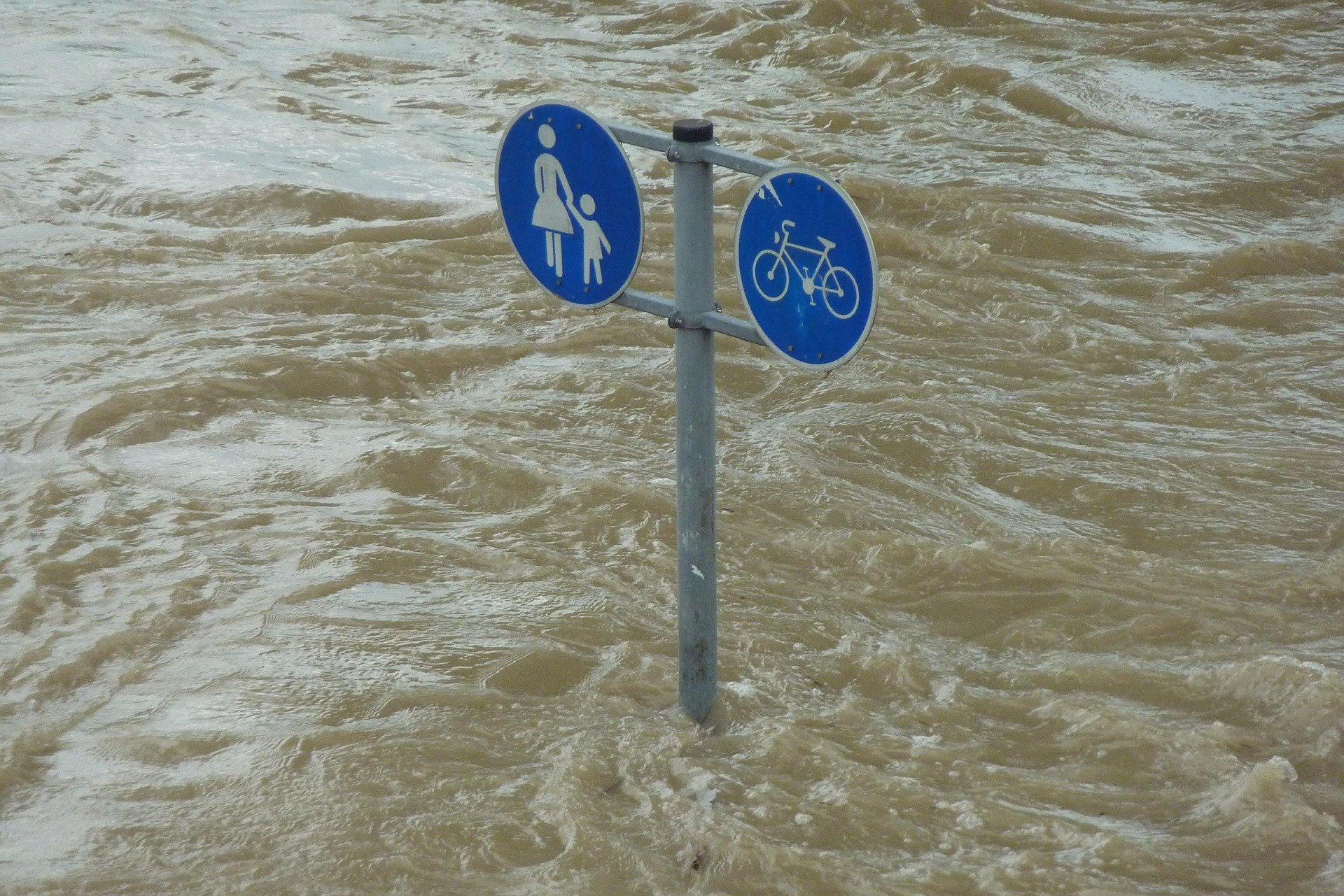 Climate Emergency Mobilities: Our Manifesto