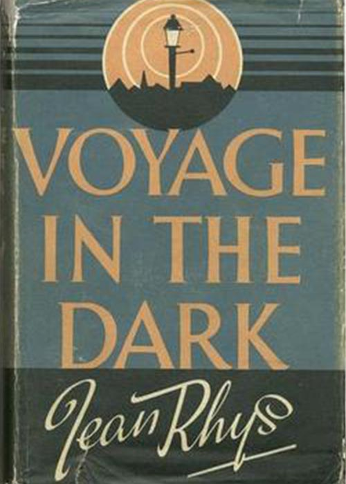 Cover of The Voyage in the Dark