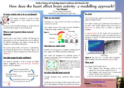 Poster thumbnail for 'How does the heart affect brain activity - a modelling approach?'