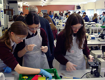 Visiting school pupils take part in a biology workshop