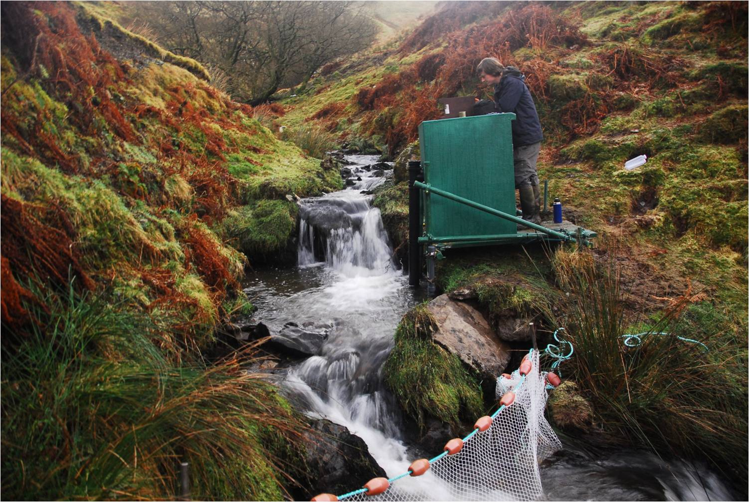 Monitoring water quality at the LI7 (Nant Rhesfa) water quality station © NA Chappell