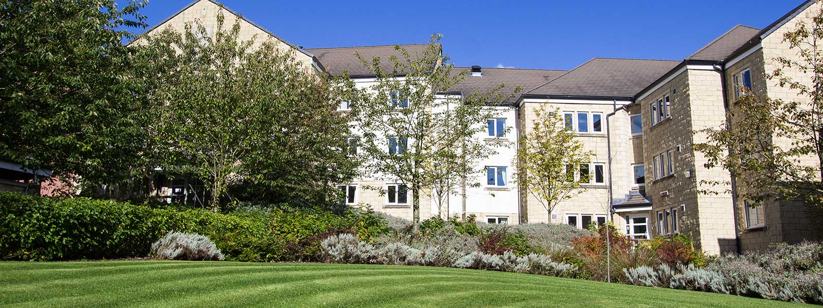 Image of campus accommodation buildings