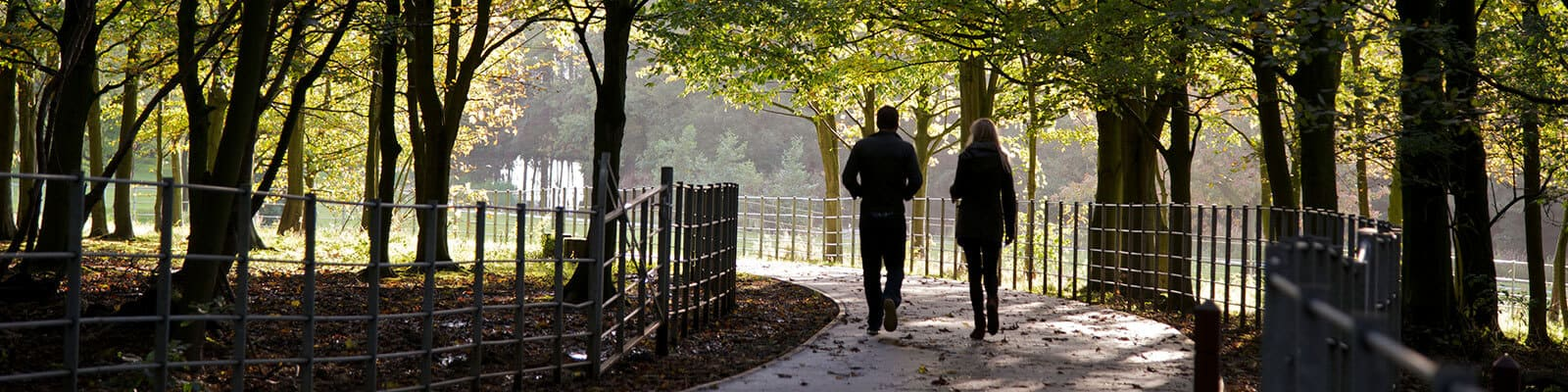 Two people walking on the woodland walk