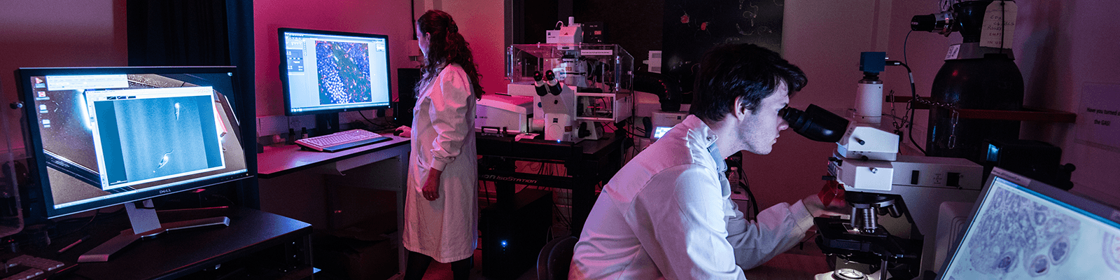 Two researchers working in a Lancaster University lab