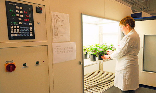 The controlled environment plant growth rooms