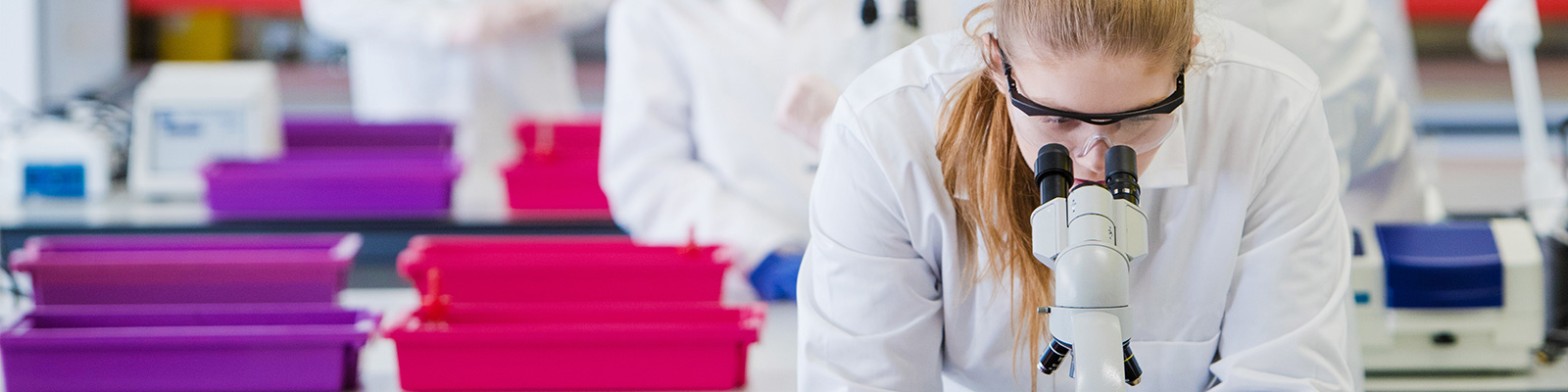 Biomedical Science at Lancaster University