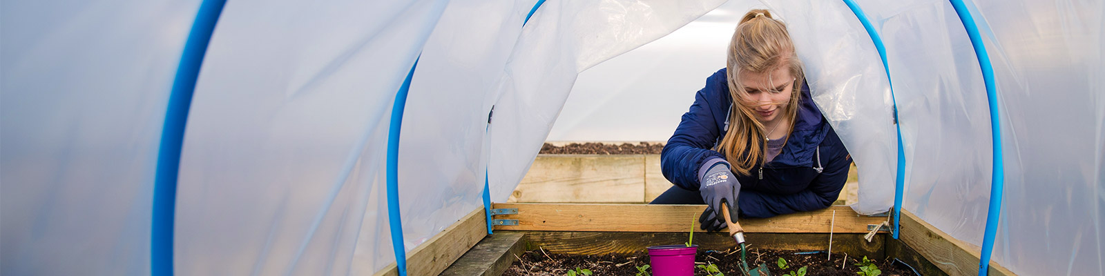 A student in a polytunnel