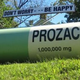 Prozac leadership @ work