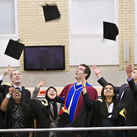 Rise in number of alumni in graduate jobs or study