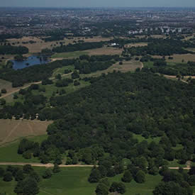 London is greener than you think as plans for world's first National City Park gain momentum