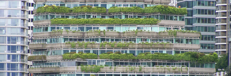 A sustainable building, covered in plants.