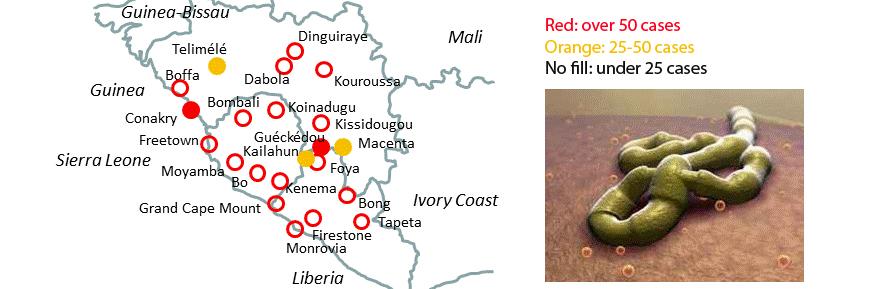 Image of the Ebola virus, and map of the affected areas.
