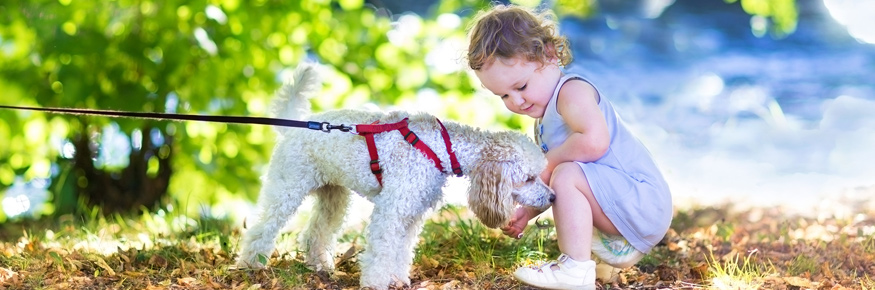 "Children learn words like ""woof"" more easily because the sound corresponds to the meaning"