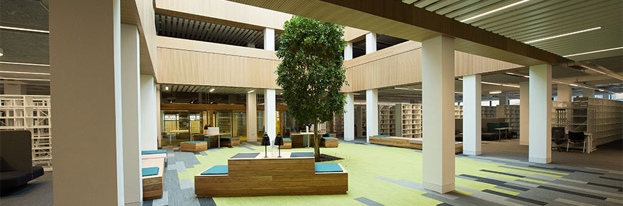 Lancaster University is ranked joint first for its library provision and opening hour