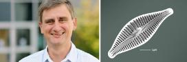 A photo montage of LEC's Professor Phil Barker and a diatom, Afrocymbella barkeri, that was named after him.