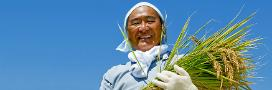An image from LEC of a farmer against a blue sky hlding a bundle of rice palnts