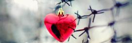 Heart on barbed wire