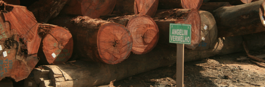The Brazilian Amazon alone holds around 4.5 billion m3 of commercial timber volume