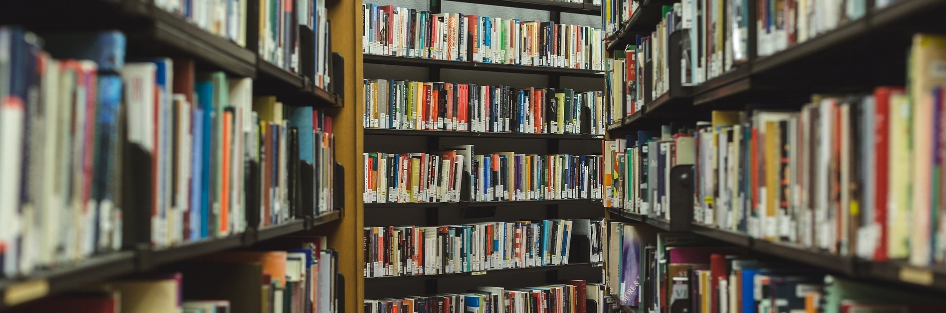 Image of bookshelves crammed with books.