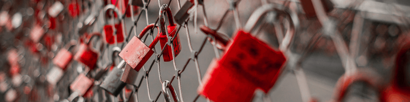 Picture of locks on a fence